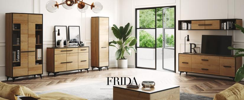 Witryna FRIDA W1D